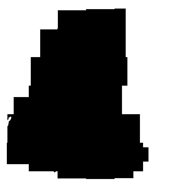 carolus4